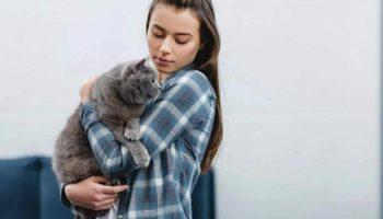 Как кошки относятся к людям